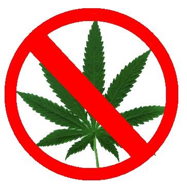 SAM Criticizes California Cannabis Business Conference