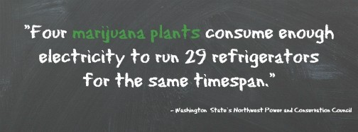 Marijuana impacts on environment are damaging.
