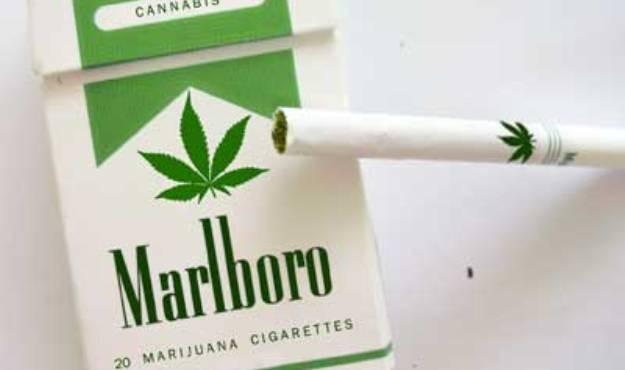 Big Marijuana and Monsanto Fail in Latest Spending Bill