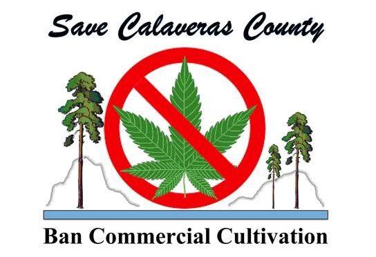 Calaveras County Enters Illicit Drug Trade for Economic Salvation