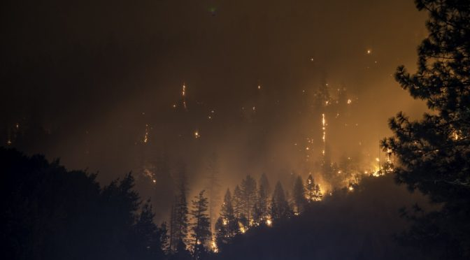 Wildfires in West Fueled, Made Worse by Marijuana